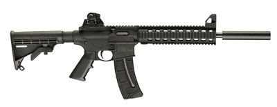 Click for full size image of the M&P15-22
